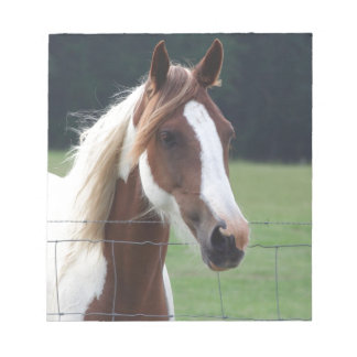 Beautiful Paint Pinto Horse at fence Notepad