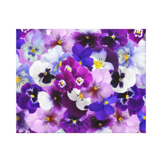 Beautiful Pansies Spring Flowers Canvas Print