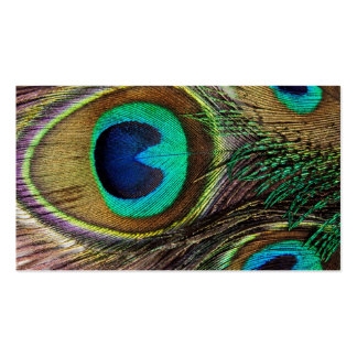 Beautiful Peacock Feathers Pack Of Standard Business Cards