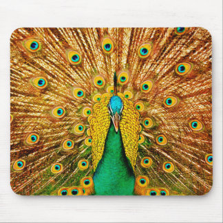 Beautiful Peacock Mouse Pad
