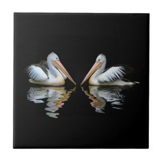 Beautiful pelicans reflection on black background tile