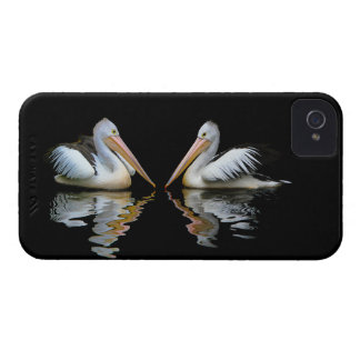 Beautiful pelicans reflection on black water, gift iPhone 4 case