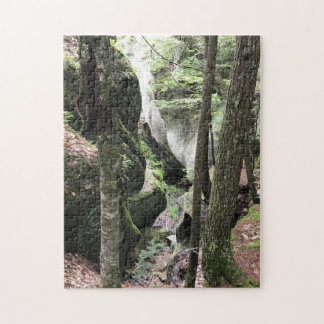 Beautiful picture of woods, 252 pieces jigsaw puzzle