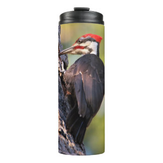 Beautiful Pileated Woodpecker on the Tree Thermal Tumbler
