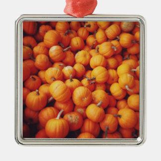 Beautiful Piles of Pumpkin Seasonal Ornament