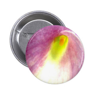 Beautiful pink calla lily flower close up view pinback button