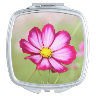 Beautiful pink cosmos flower mirror for makeup
