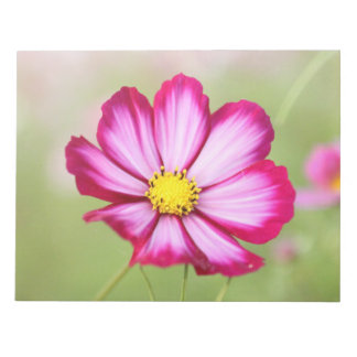 Beautiful pink cosmos flower note pad