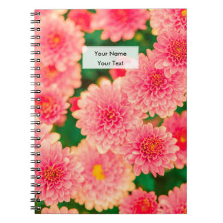 Beautiful Pink Dahlias Flowers Floral Spiral Notebooks