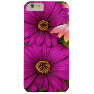 Beautiful Pink Daisies Barely There iPhone 6 Plus Case