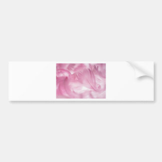 Beautiful Pink Feather Bumper Sticker