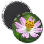 Beautiful pink flower 6 cm round magnet