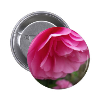 Beautiful Pink Flower - Camellia Buttons