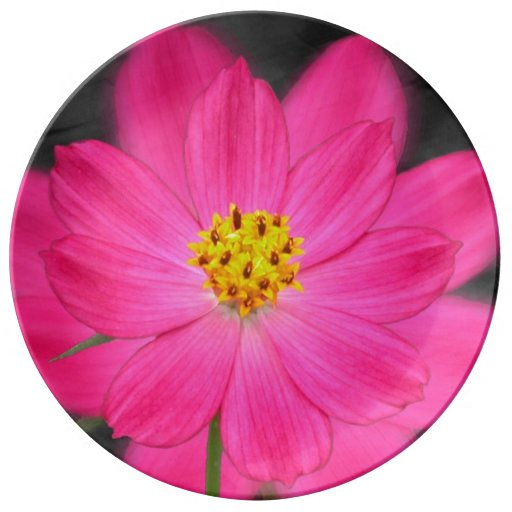 Beautiful pink flower porcelain plate