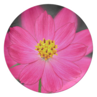 Beautiful pink flower party plates