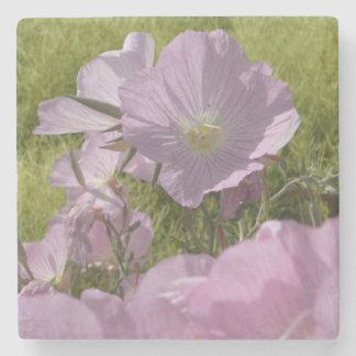 Beautiful Pink Flowers Photo Marble Stone Coaster