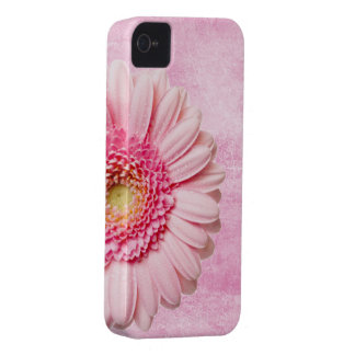 Beautiful Pink Gerbera Daisy Vintage Case-Mate iPhone 4 Case