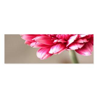 Beautiful pink gerbera on beige pack of skinny business cards