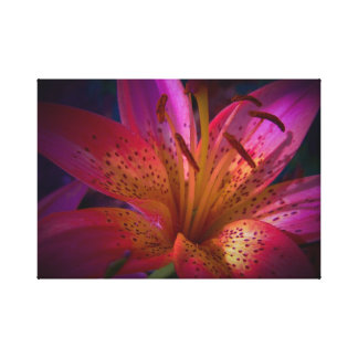 Beautiful Pink Lily Canvas Print