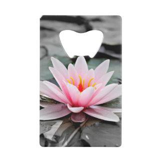 Beautiful Pink Lotus Flower Waterlily Zen Art