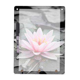 Beautiful Pink Lotus Flower Waterlily Zen Art Dry Erase Board
