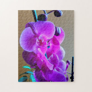 Beautiful Pink Moth Orchids Jigsaw Puzzle