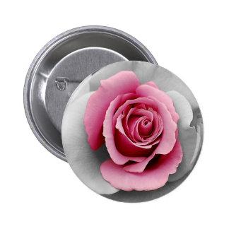 Beautiful pink rose petals print button