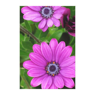 Beautiful Pink Spring Flowers Gallery Wrap Canvas