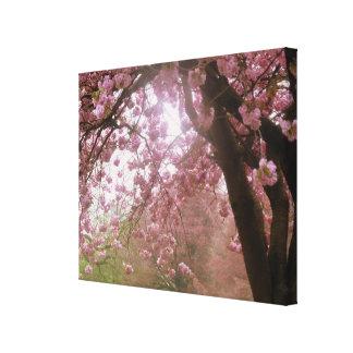Beautiful Pink Tree Blossom Canvas. Canvas Print