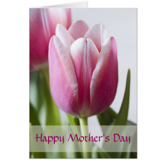 Beautiful Pink Tulip, Happy Mother's Day Greeting Cards