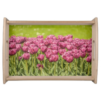 Beautiful pink Tulips - Serving Tray