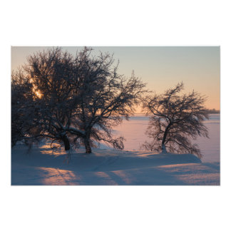 Beautiful pink winter sunset in Finland CC0829 Photograph