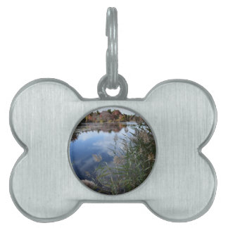 Beautiful pond pet ID tag