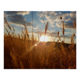 Beautiful Poster of a Sunset over a Wheat Filed