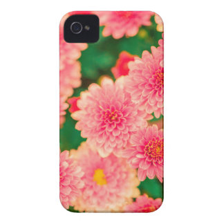 Beautiful Pretty Pink Dahlias Floral Case-Mate iPhone 4 Case