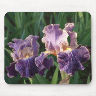 Beautiful Purple and Lavender Iris Mouse Pad