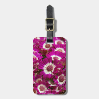 Beautiful Purple Cineraria Flowers Luggage Tag