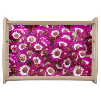 Beautiful Purple Cineraria Flowers Serving Tray