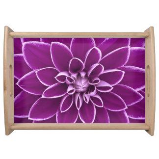 Beautiful purple dahlia flower serving tray