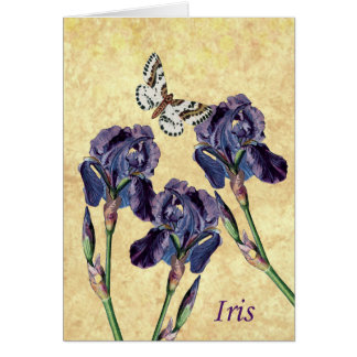 Beautiful Purple Iris Flowers and Butterfly Note Card
