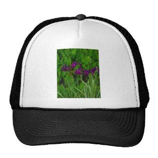 Beautiful Purple Iris Mesh Hat