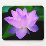 Beautiful purple lotus flower in water mouse pad