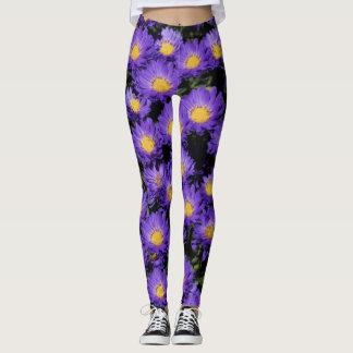 Beautiful Purple Michaelmas Daisies Leggings