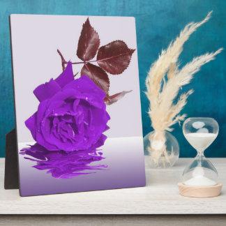 Beautiful Purple Rose Photo Plaque