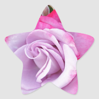 Beautiful purple rose print star sticker