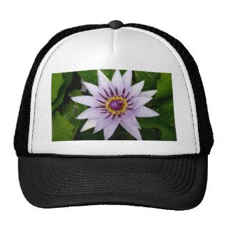 Beautiful Purple Water Lily Mesh Hats