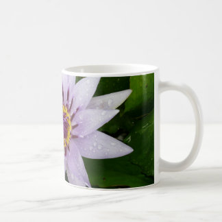 Beautiful Purple Water Lily Mug