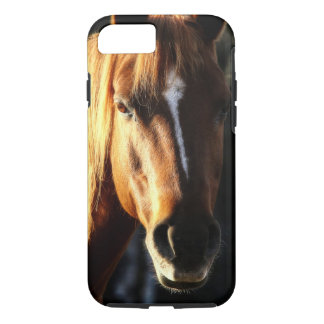 Beautiful Quarter-horse Pony Portrait iPhone 7 Case