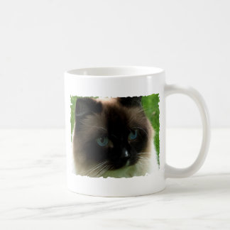 Beautiful Ragdoll Cat Mug