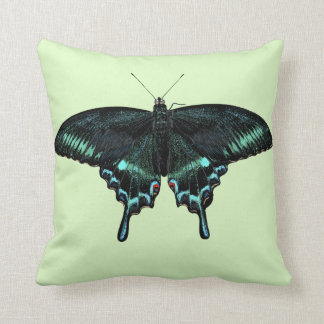 Beautiful realistic butterfly cushion